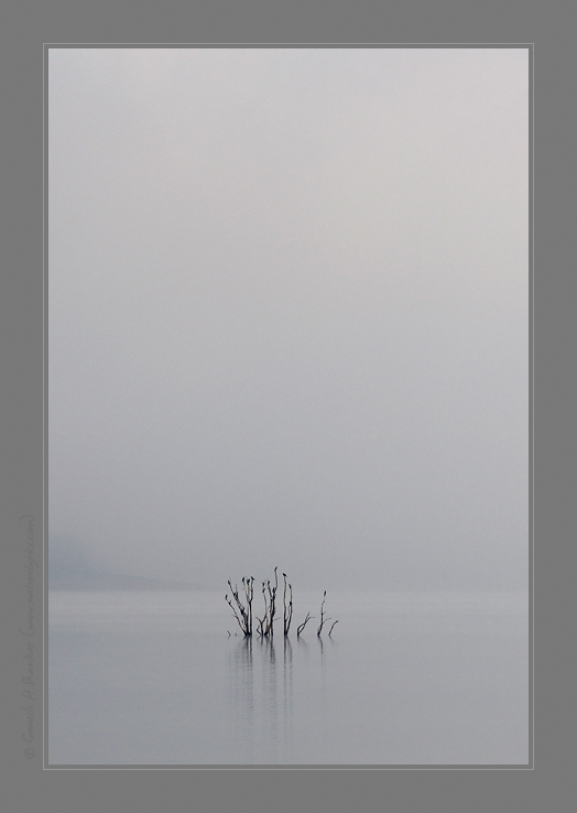 Sharavathi back waters - one misty morning | Fine Art | Creative & Artistic Nature Photography | Copyright © 1993-2017 Ganesh H. Shankar