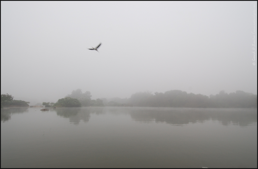 Moody Morning,Ranganathittu Bird Sanctuary, India | Fine Art | Creative & Artistic Nature Photography | Copyright © 1993-2017 Ganesh H. Shankar