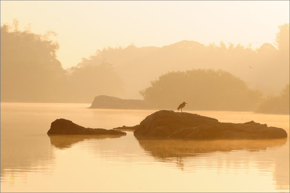 Sunrise, Ranganathittu Bird Sanctuary, India | Fine Art | Creative & Artistic Nature Photography | Copyright © 1993-2017 Ganesh H. Shankar