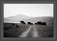 Elephants at Corbet, Corbet National Park, India | creative_visions Fine Art Nature Photography
