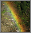 Painted Wall of Nature | creative_visions Fine Art Nature Photography