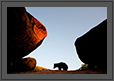 Stones and a Bear | daroji Fine Art Nature Photography