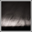 Portrait of Wind | bw Fine Art Nature Photography